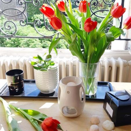 parfum-interieur-maison | diffuseur-parfum-décoration