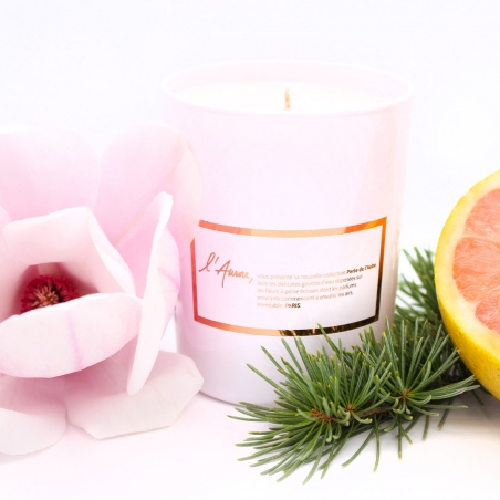 Gift-candle | grapefruit