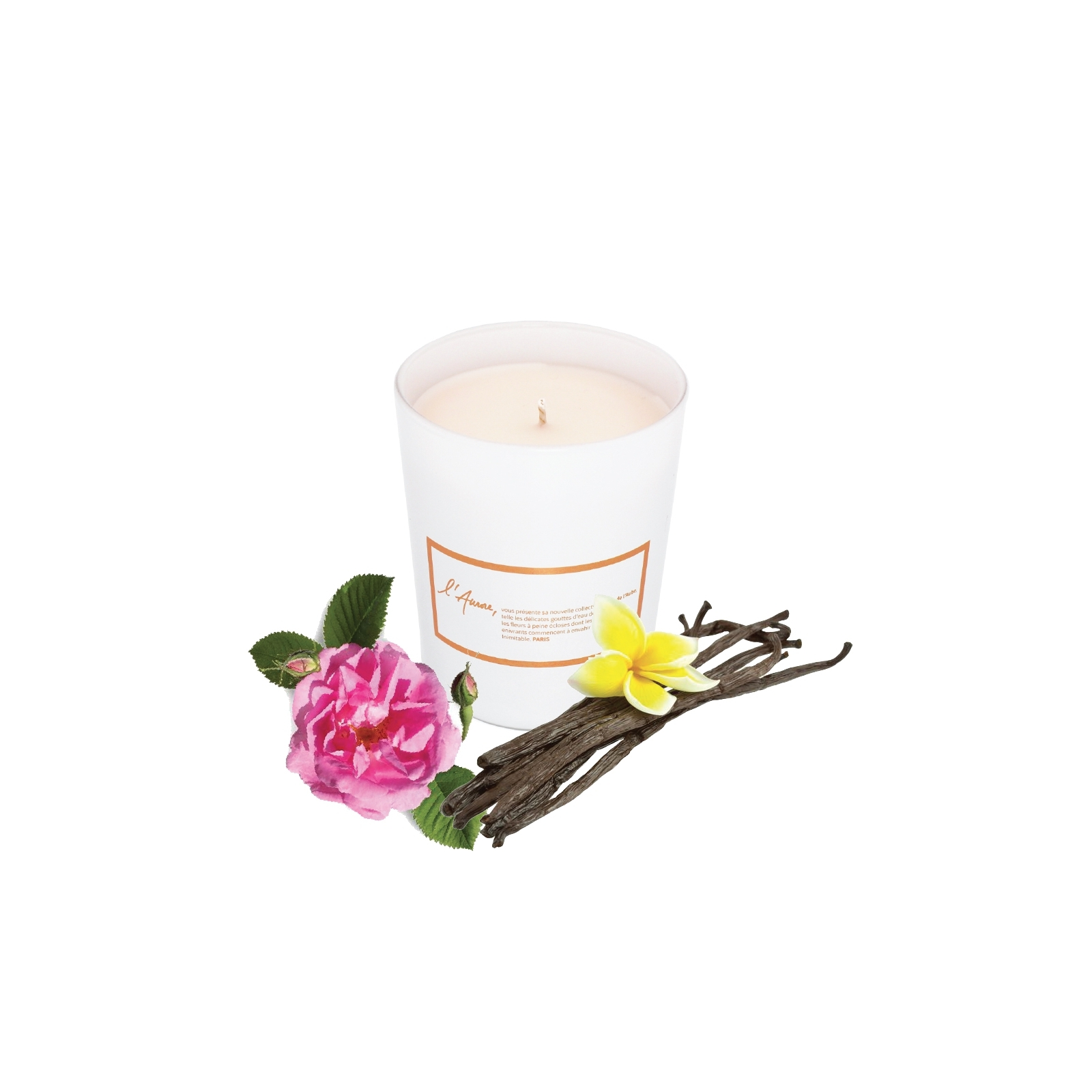 Scented candle EPICE D'ORCHIDEE (vanilla, musc)
